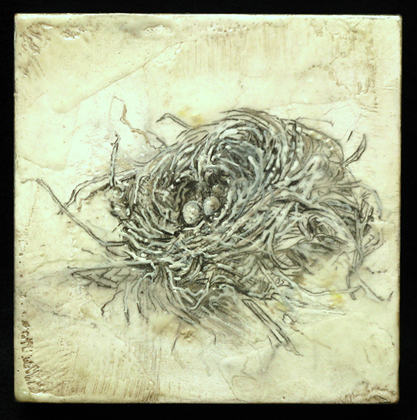 "White Nest, graphite, encaustic, 6"" x 6"""